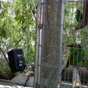 Technomad Noho provides audio to the Orinoco exhibits at the Dallas World Aquarium