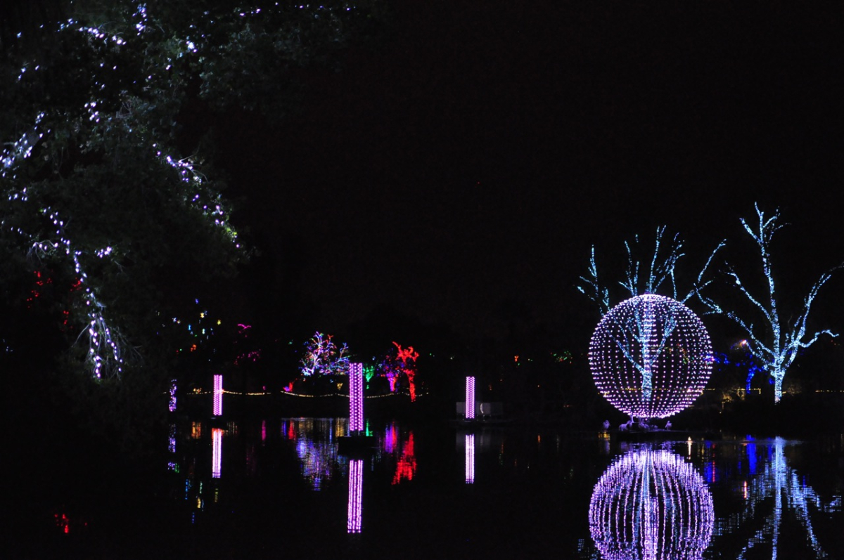The previously seasonal show proved so popular that Phoenix Zoo has turned it into a year-round experience